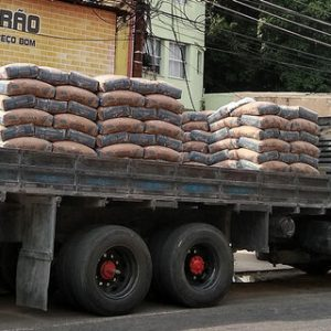 Foto: Reprodução/Governo do Mato Grosso do Sul