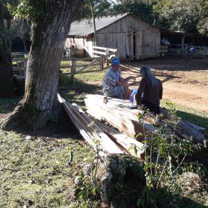 Estudo com 400 propriedades avaliará biosseguridade de rebanho bovino gaúcho