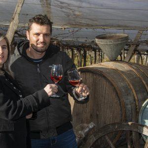 Qualificação e sucessão rural marcam história de vinícolas familiares em Bento Gonçalves